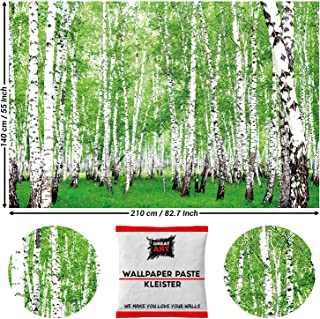 Great Art Photo Wallpaper Wall Decoration Birch Forest - Landscape Trees Poster Nature Lover 210 x 140 cm/82.7 Inch x 55 Inch - Wallpaper 5 Pieces Includes Paste