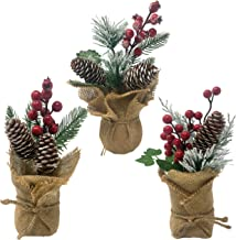 Tabletop Christmas Trees- Set of 3 Potted Pines in a Burlap Wrapped Base - Farmhouse Holiday Home Decorations - Red Berry ...