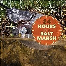 24 ساعة في ملح مارش (يوم في نظام إيكولوجي)