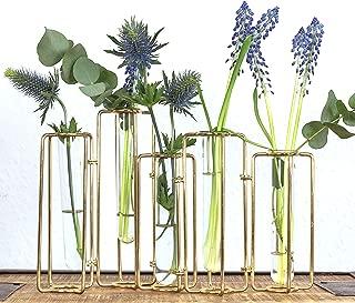 Hinged Bud Vase Set 5, Clear Glass Cylinder Vases for Centerpieces, Round Single Flower decor, Gold Metal Outline Frame for Test Tube Glasses, Multiple Propagation Stations, Wedding Table Decoration