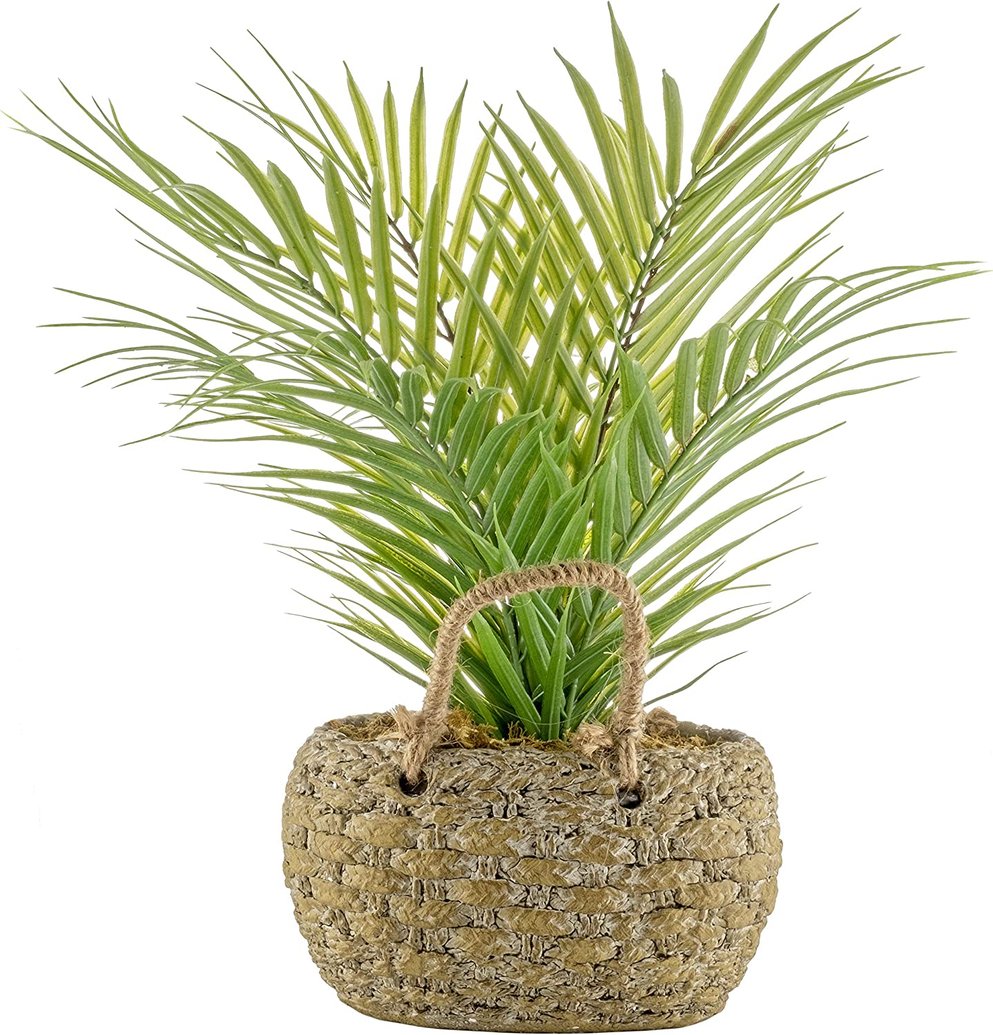 Small Green Artificial Palm Tree in Sculpted Basket Weave Cement Pot for Modern Home Decor - 16.5 in/42cms Tall - Living Room, Kitchen, Bedroom, Office, Dining, Bathroom, Indoors, Outdoors