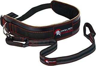 Dark Iron Fitness Leather Weight Belt Lifting Dip Belt - Weight Belts with Chain Belt Weightlifting Strap Replacement - Weight Pullup Belt/Weighted Dip Belt Tricep Dip Belt with Dipping Belt Strap