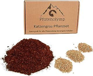 Pfotenolymp® XXL kattgräs replanteringsset – vetegräsfrön och jord – lämplig för kattgrässkål av porslin och bambu – katt ...