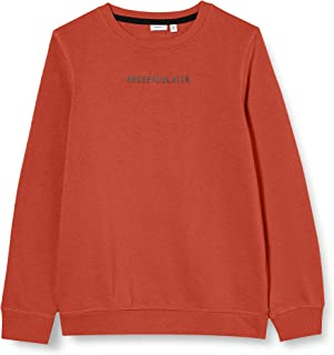 NAME IT Nkmnaim LS Sweat BRU Box Suéter para Niños