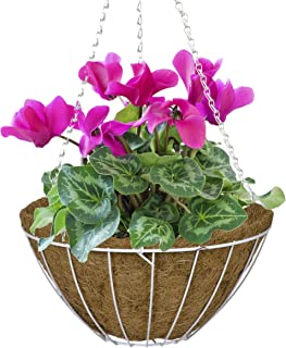 CobraCo White 16-Inch Growers Style Hanging Basket HGB16-W