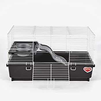 Kaytee My First Home Habitat for Pet Rat, 24 by 12-Inch,Black