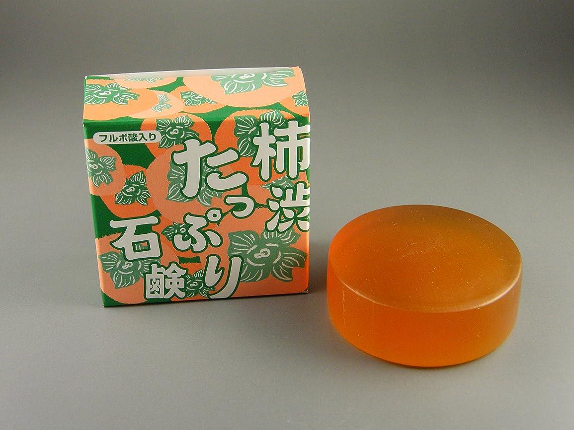 湿気の多い絶滅させる魚柿渋たっぷり石鹸 100g(フルボ酸入り)