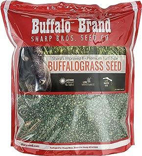 Sharp's Improved II Buffalograss by Sharp Bros. Seed Company