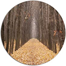 """Designart MT13957 C23 Yellow Road Through Fall Forest Modern Forest Round Metal Wall Art Disc, 23"""" x 23"""", Yellow"""