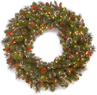 National Tree 36 Inch Crestwood Spruce Wreath with Silver Bristles, Cones, Red Berries, Glitter and 200 Clear Lights (CW7-306-36W-1)