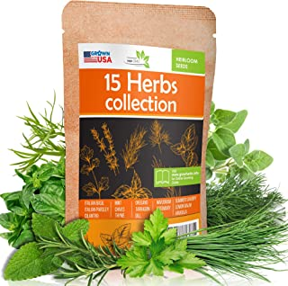 15 Culinary Herb Seeds Pack - Heirloom and Non GMO, Grown in USA - Indoor or Outdoor Garden - Basil, Parsley, Dill, Cilant...