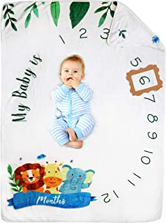 Pamperous Monthly Baby Milestone Blanket – Award-Winning Organic Baby Monthly Milestone Blanket Baby Boy or Girl – Soft, H...