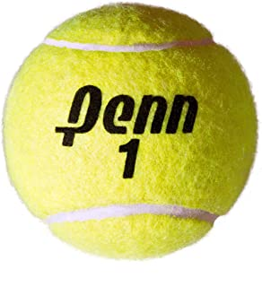 Penn Jumbo 10 Inch Inflatable Large Tennis Ball