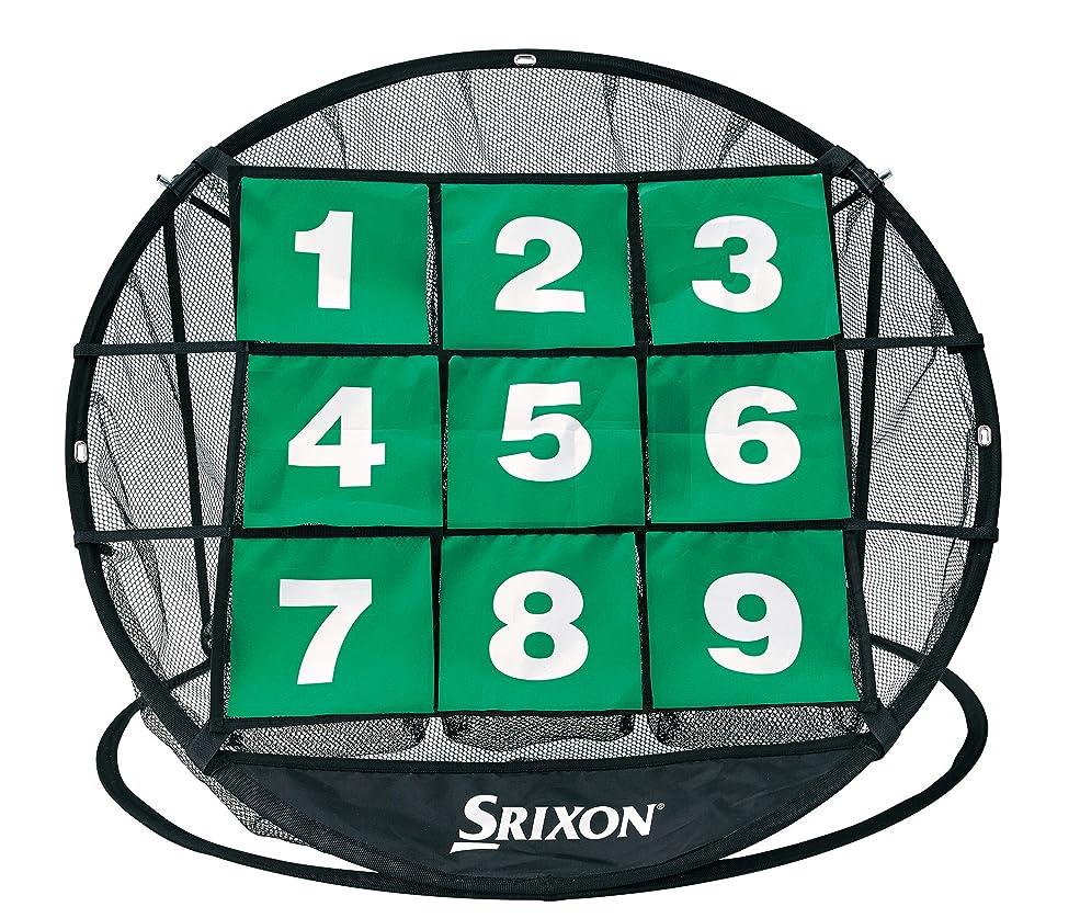 酸っぱい乳剤気取らないDUNLOP(ダンロップ) 練習ネット SRIXON チップインビンゴ GGF-68108