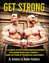 progressive calisthenics book
