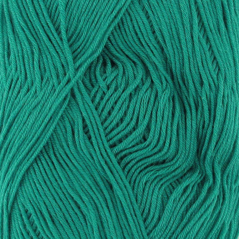 BambooMN Yarn - 2 Skeins - Soft Touch Bamboo Rayon/Acrylic Yarns - Solids 100g Balls - 24 Spring Green