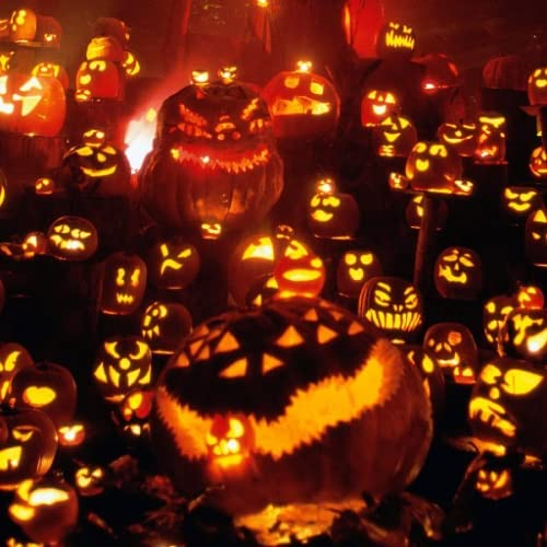 Our Halloween Images Live WP