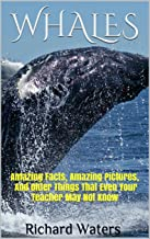 WHALES: Amazing Facts, Amazing Pictures, and Other Things About Whales That Even Your Teacher May Not Know (Children's Boo...