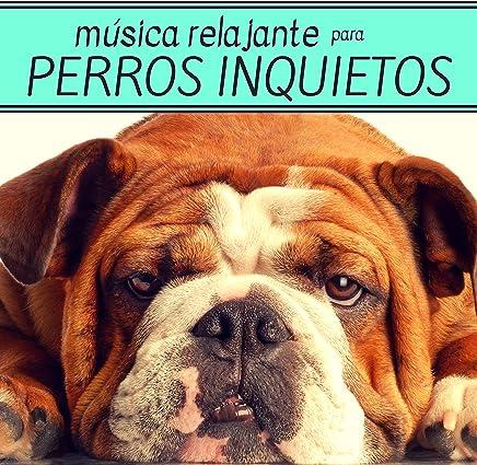 Música Relajante para Perros Inquietos - Tranquiliza a tus Amigos de Cuatro Patas con Esta Música