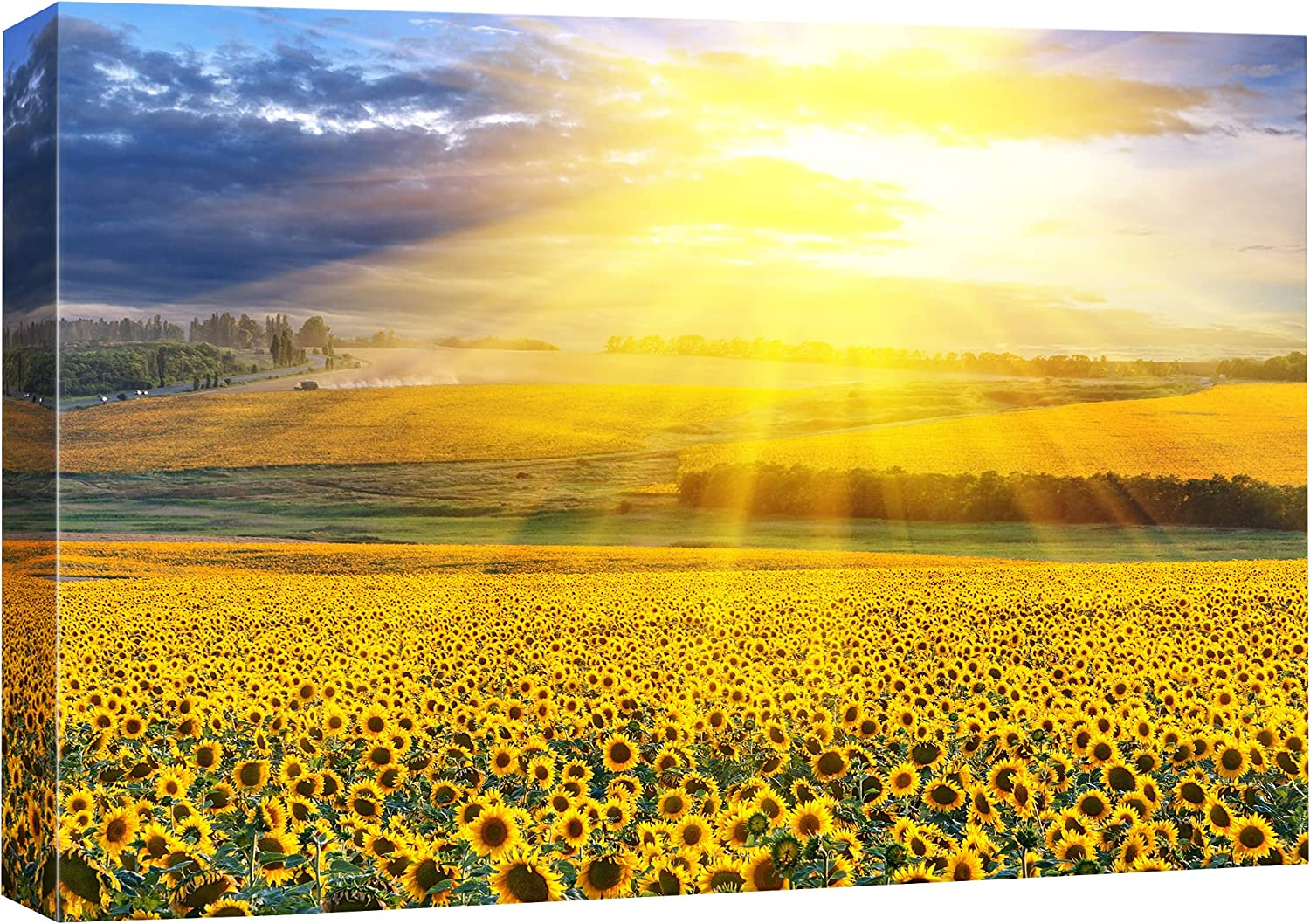 SIGNFORD Canvas Print Wall Art Sunlight Shines on Sunflower Field Floral Plants Photography Realism Contemporary Scenic Colorful Multicolor Ultra for Living Room, Bedroom, Office - 16