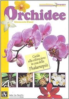 Orchidee. Guida alla coltivazione in casa della Phalaenopsis