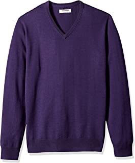 Amazon Brand - Goodthreads Men's Lightweight Merino Wool V-Neck Sweater