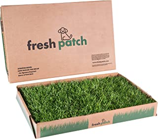 Fresh Patch Disposable Dog Potty with Real Grass