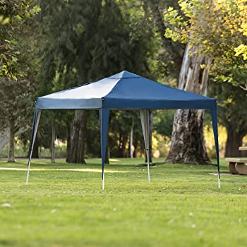 Outdoor Portable Pop Up Canopy Tent w/ Carrying Case