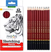 12 Sketching Pencils – Complete Professional Graphite Pencil Set for Sketch Drawing – 8B to 2H Art Travel Set for Adults a...