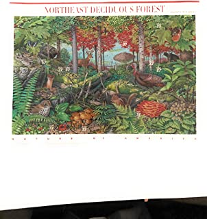 Best northeast deciduous forest stamps Reviews