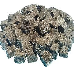freeze dried blackworms discus