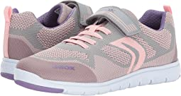 Geox Kids - JR Xunday Girl 1 (Big Kid)
