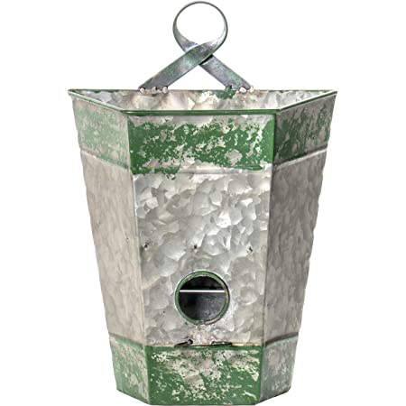 Red Co. Rustic Northwoods Galvanized Metal Birdhouse and Planter