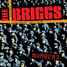 Best the briggs numbers Reviews