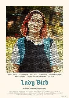 newhorizon Lady Bird Movie Poster 17'' x 23'' NOT A DVD