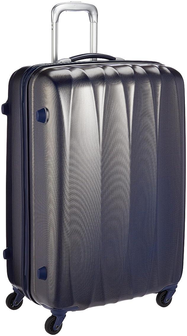 で出来ている迷信小さな[アメリカンツーリスター] スーツケース アローナライト スピナー75087L 70 cm 4.4 kg 56533 国内正規品 メーカー保証付き