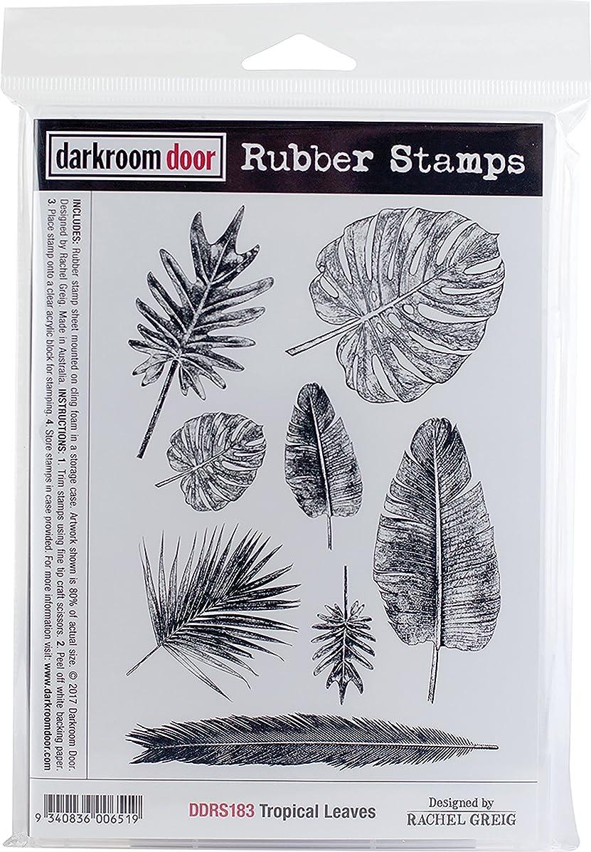 Darkroom Door Tropical Leaves Cling Stamps 7
