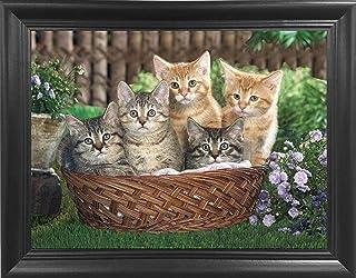 Kittens in Basket Framed 3D lenticular Picture – Unbelievable Life Like 3D Art..