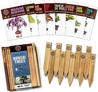 Bonsai Tree Seeds Kit - 8 Popular Varieties of Non GMO Mini Bonsai Trees, Bamboo Plant Markers, Wood Gift Box - Bonzie Tre...