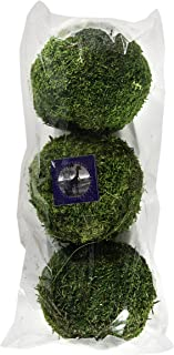 Best decorative moss balls wholesale Reviews