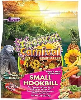 Best african conure parrot Reviews