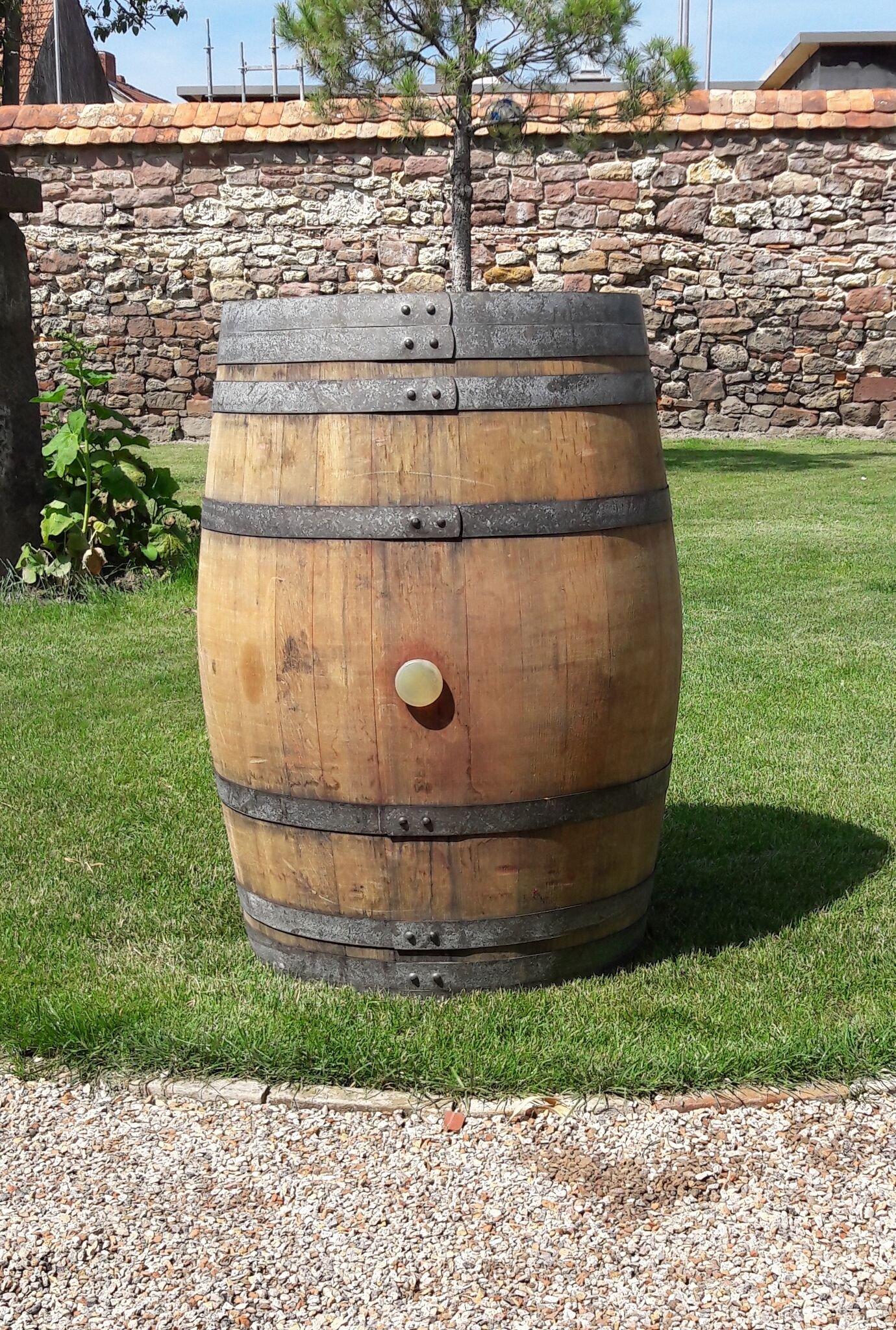 Barrica de vino auténtica de roble para decoración de jardín, de 225 litros: Amazon.es: Jardín