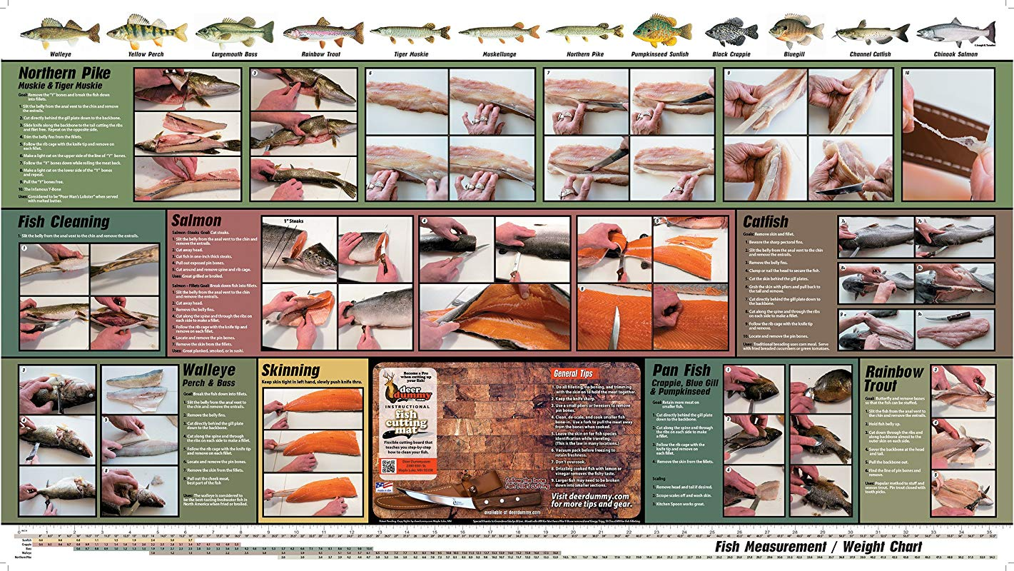 Harold Import Company 578 Dummy Thin Flexible Cutting Board Mat With Instructions For Cleaning And Filleting Fish 36 By 20 Inches Brown