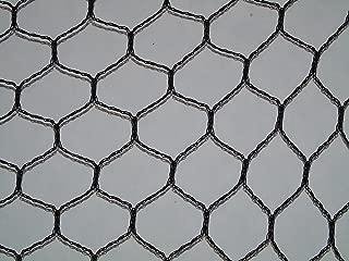bird wire mesh