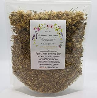 Arnica Flowers 4ounces bulk dried Heterotheca inuloides