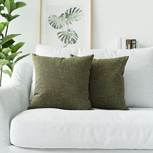 Cool Green And Linen Couch Pillows Amazon Com Ibusinesslaw Wood Chair Design Ideas Ibusinesslaworg