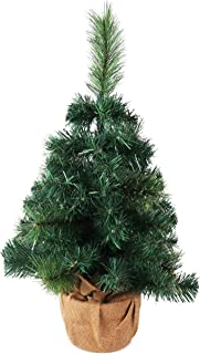mondell pine trees for sale