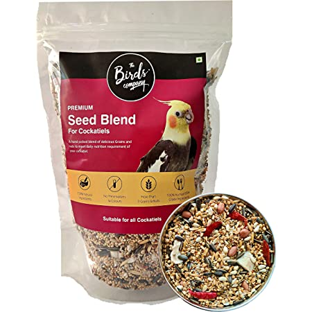 The Birds Company Premium Seed Blend of 9 Grains & Nuts, Fortified with Spirulina & Cuttlefish Bone, Bird Food for Cockatiels, 450 g