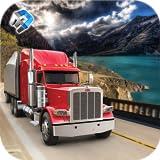 euro magnífico camión conductor