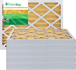 FilterBuy 30x36x2 MERV 11 Pleated AC Furnace Air Filter, (Pack of 6 Filters), 30x36x2 – Gold